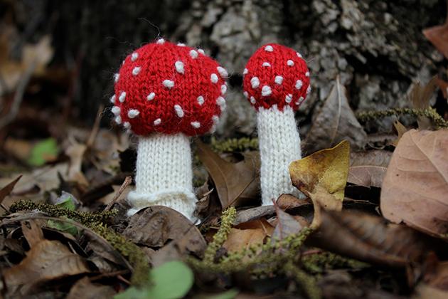 Quitar las uñas sorprendido con el hongo