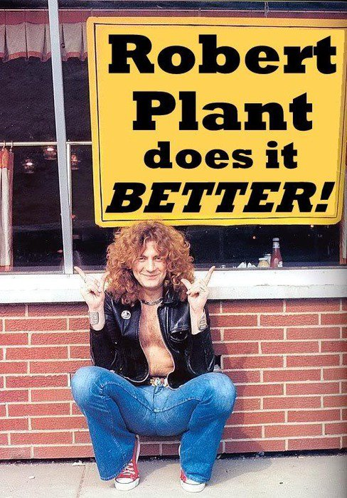 Robert Plant Converse