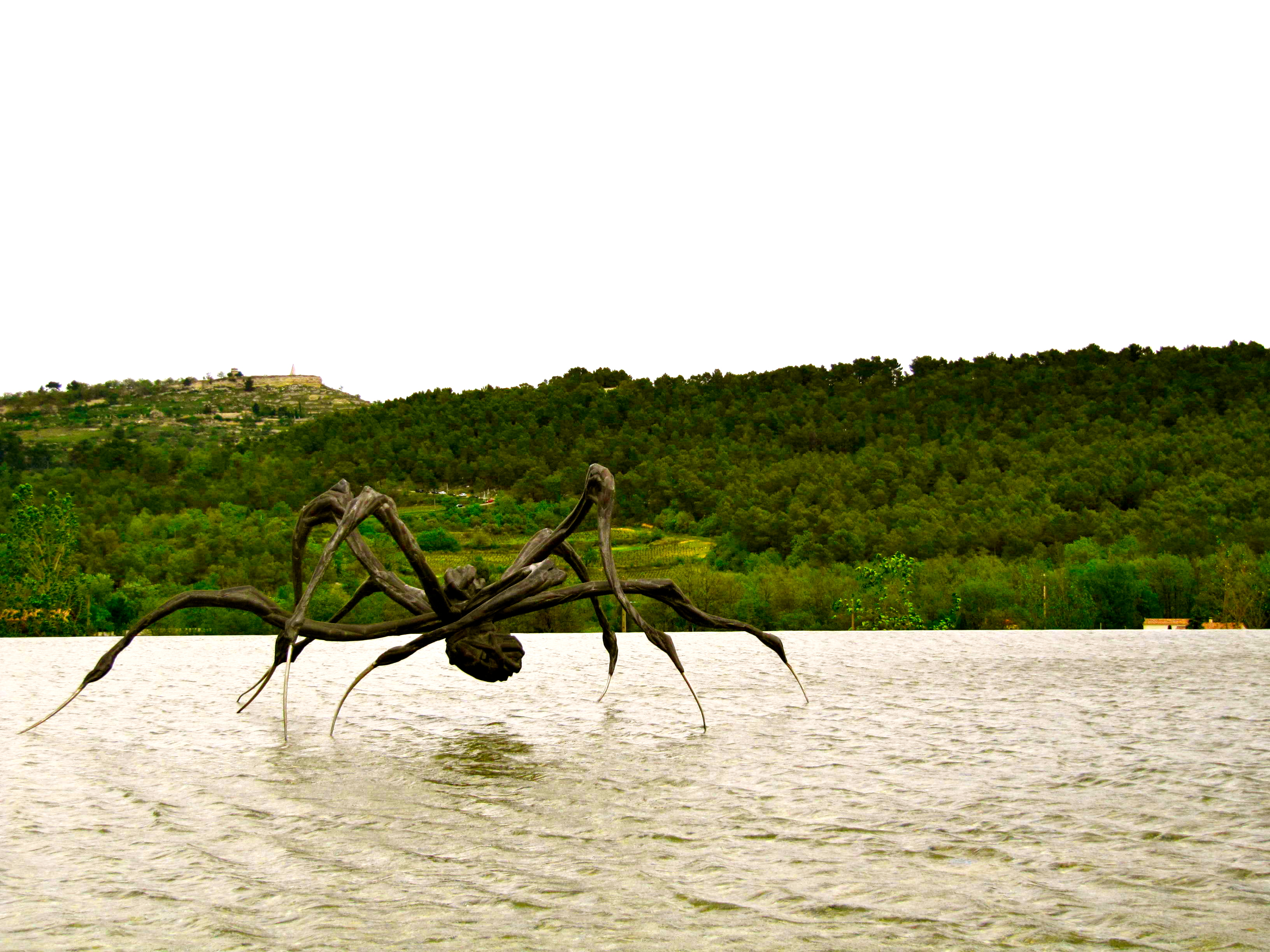 crouching spider 2