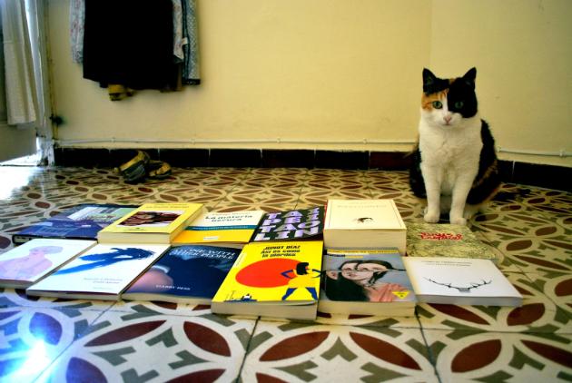 luna-libros-2013